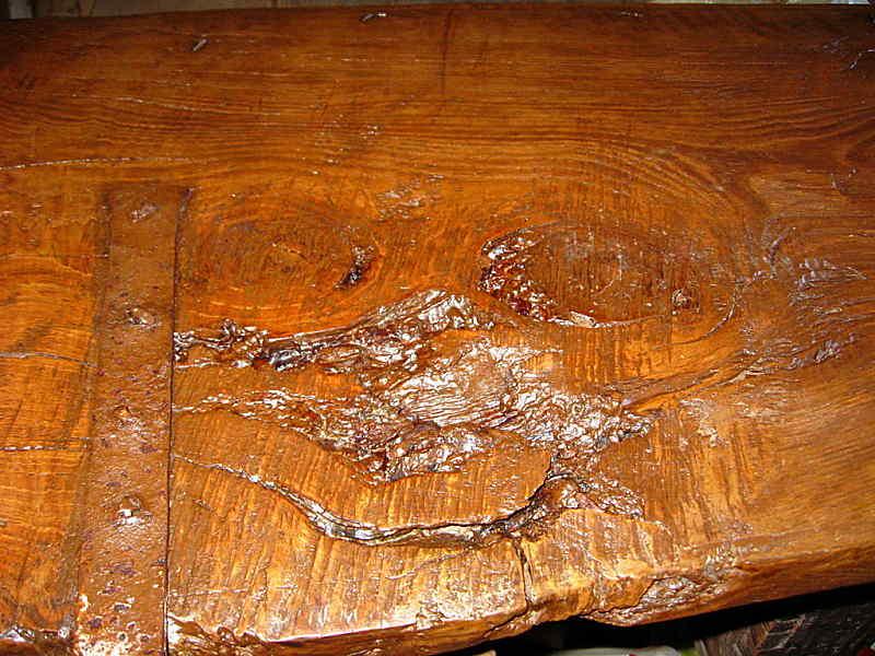 Una delle cipollature del castagno